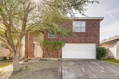 San Antonio Single Family Home New: 5003 Brazoswood