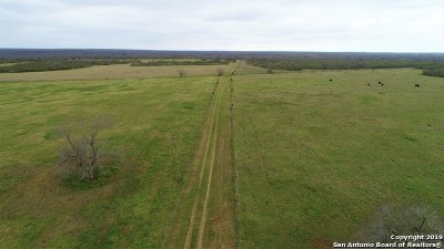 Atascosa County Farm & Ranch For Sale: 00 Hwy 85