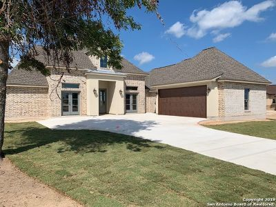 Floresville Single Family Home For Sale: 299 Abrego Lake Dr
