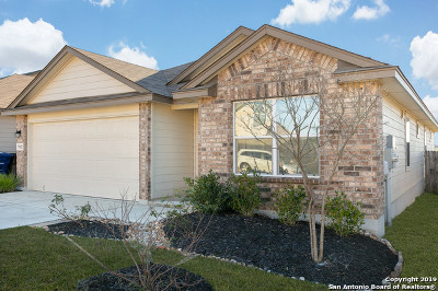 San Antonio Single Family Home New: 7102 Phoebe View