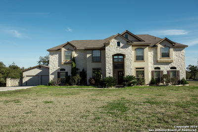 Bexar County Single Family Home For Sale: 13918 Tahoe Vista