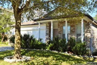 Single Family Home New: 21402 Encino Lookout