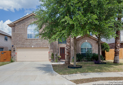 San Antonio TX Single Family Home For Sale: $317,000
