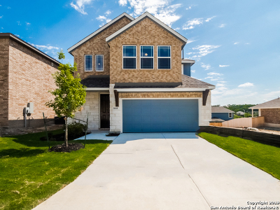 Single Family Home For Sale: 2818 High Castle