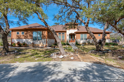 New Braunfels Single Family Home For Sale: 2065 Passare