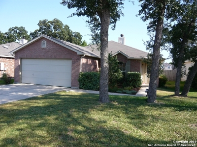 Boerne Single Family Home For Sale: 105 Michelle Ln