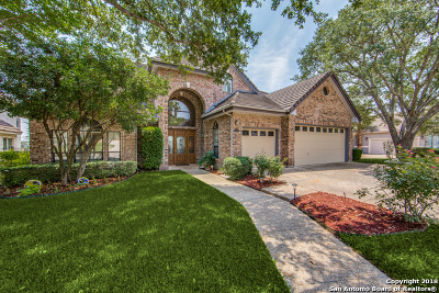 Stone Oak Single Family Home For Sale: 19126 Kristen Way