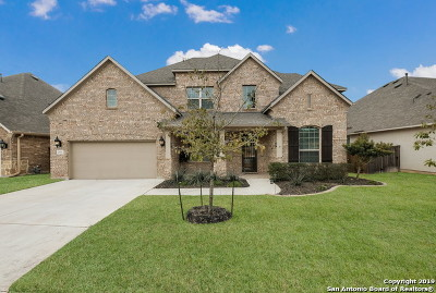 Boerne Single Family Home For Sale: 29011 Porch Swing