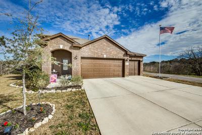 Converse Single Family Home For Sale: 8962 Palmetto Park