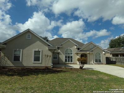 Seguin Single Family Home Active Option: 608 Garnet St