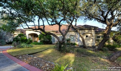 Boerne Single Family Home For Sale: 535 Cordillera Trace