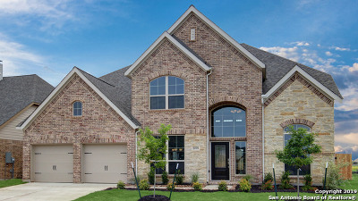 Seguin Single Family Home For Sale: 2005 Creek Ridge Street