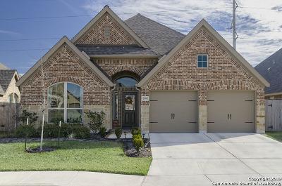 Seguin Single Family Home For Sale: 2097 Range Rd