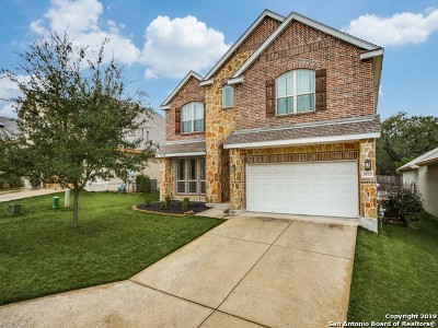 Boerne Single Family Home For Sale: 8515 Dana Top Dr