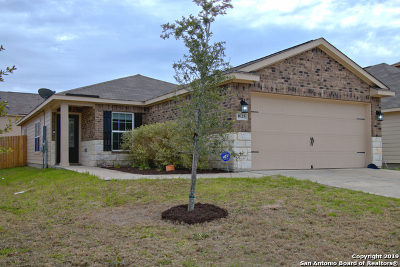 Kyle Single Family Home For Sale: 1625 Treeta Trail