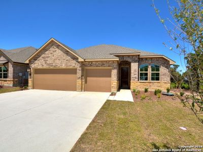 Kendall County Single Family Home For Sale: 21 Mariposa Pkwy