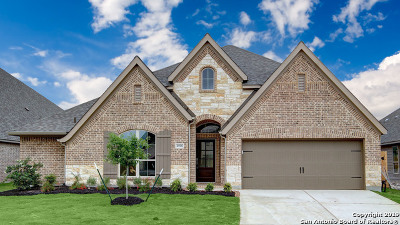 Seguin Single Family Home For Sale: 2976 High Meadow Street