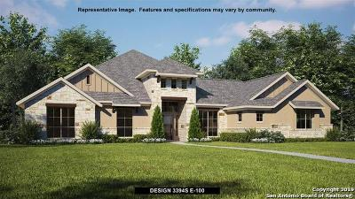 New Braunfels Single Family Home For Sale: 1027 Diretto Drive