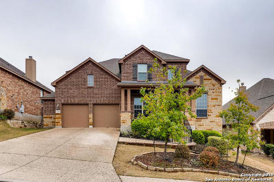 Bexar County Single Family Home For Sale: 17014 Turin Ridge