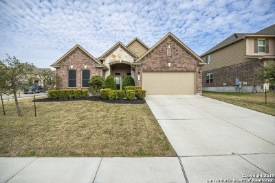 Cibolo Single Family Home For Sale: 828 Alpino