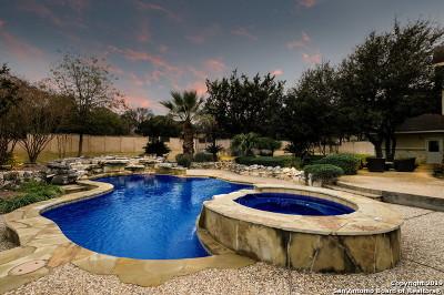 San Antonio Single Family Home For Sale: 628 Ridge Trace