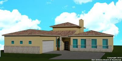 Stone Oak Single Family Home For Sale: 25102 Estancia Cir