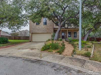 San Antonio Single Family Home For Sale: 1006 Candlenut