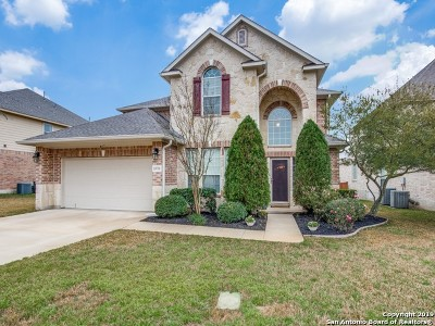 San Antonio Single Family Home Price Change: 13731 Palatine Hill