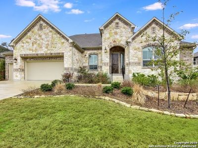 Boerne Single Family Home For Sale: 28935 Bearcat
