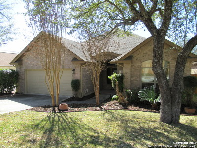 San Antonio Single Family Home Active Option: 31 Great Wood