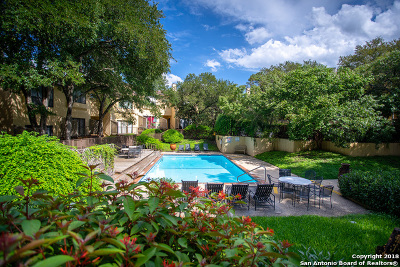 San Antonio Condo/Townhouse Active Option: 8642 Fredericksburg Rd #705-G