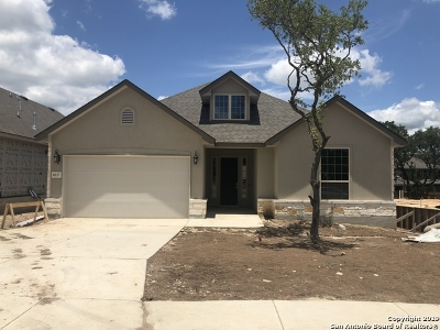 Boerne Single Family Home New: 8227 Scarlet Gaura