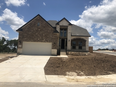 Boerne Single Family Home New: 8232 Scarlet Gaura