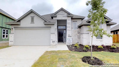 New Braunfels Single Family Home New: 630 Mission Hill Run