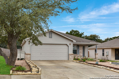Boerne Single Family Home For Sale: 209 Michelle Ln