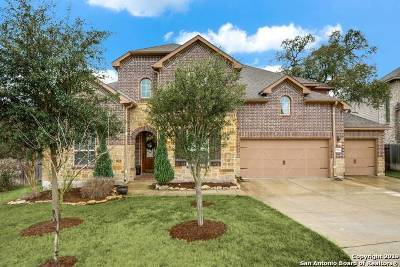 San Antonio Single Family Home For Sale: 25503 Stormy Rock