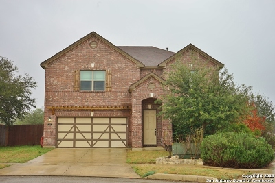 Boerne Single Family Home New: 248 Winding River
