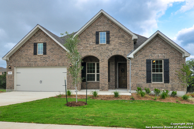 New Braunfels Single Family Home New: 1085 Limestone Way