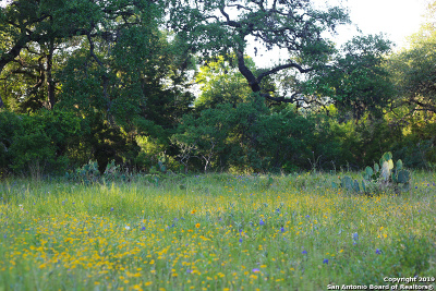 New Braunfels Residential Lots & Land New: 531 River Chase Way