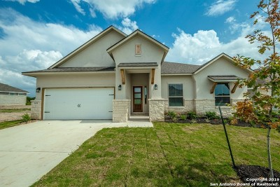 New Braunfels Single Family Home For Sale: 3175 Daisy Meadow