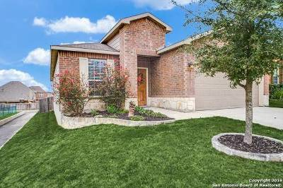 Bexar County, Kendall County Single Family Home Active Option: 27203 Paraiso Manor