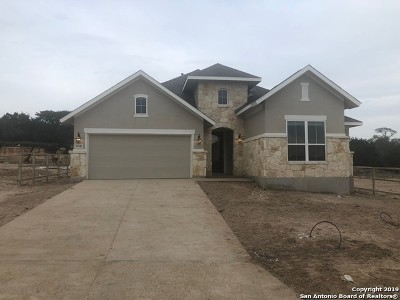 Comal County Single Family Home Price Change: 32142 Mirasol Bend