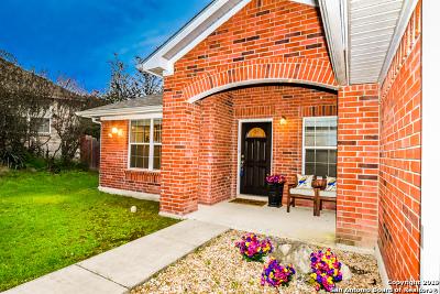 Single Family Home For Sale: 22110 McNabb Circle