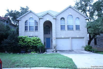San Antonio Single Family Home New: 3030 Sonora Mesa