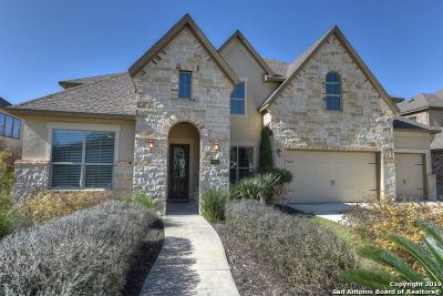 Boerne Single Family Home New: 28011 Sonoma Ambre