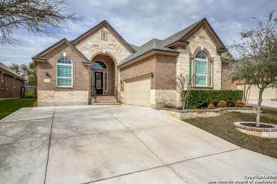 Helotes Single Family Home New: 9742 Helotes Hill