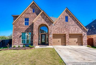Bexar County Single Family Home New: 13802 Annuziata