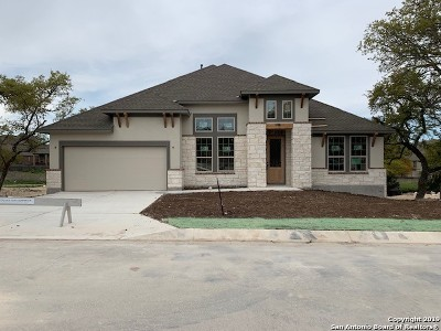 Fair Oaks Ranch Single Family Home New: 29027 Front Gate