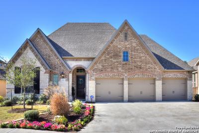 San Antonio Single Family Home New: 4014 Monteverde Way