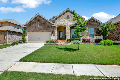 New Braunfels Single Family Home New: 3141 Birch Bend